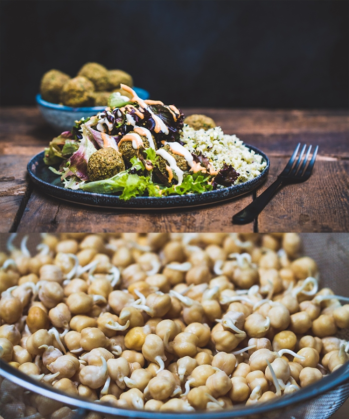 Raw-Food-Recipe-Falafel-Chickpeas